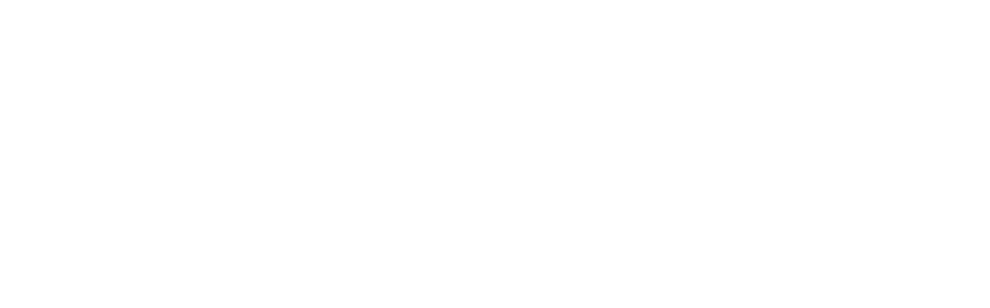 Meta 2016